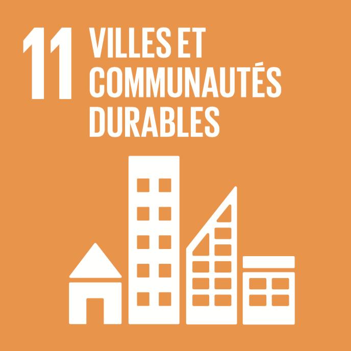 11 objectifs de développement durable