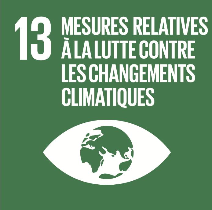 13 objectifs de développement durable