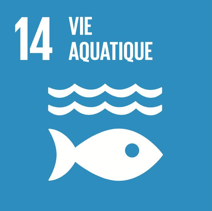 14 objectifs de développement durable