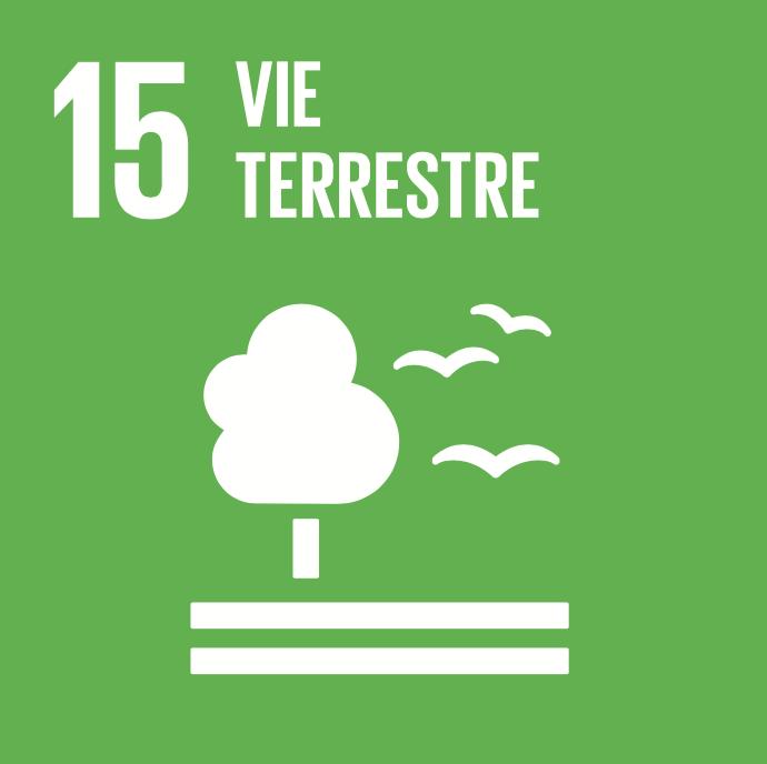 15 objectifs de développement durable