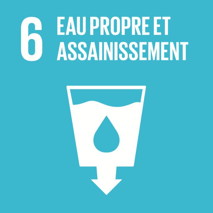 6 objectifs de développement durable