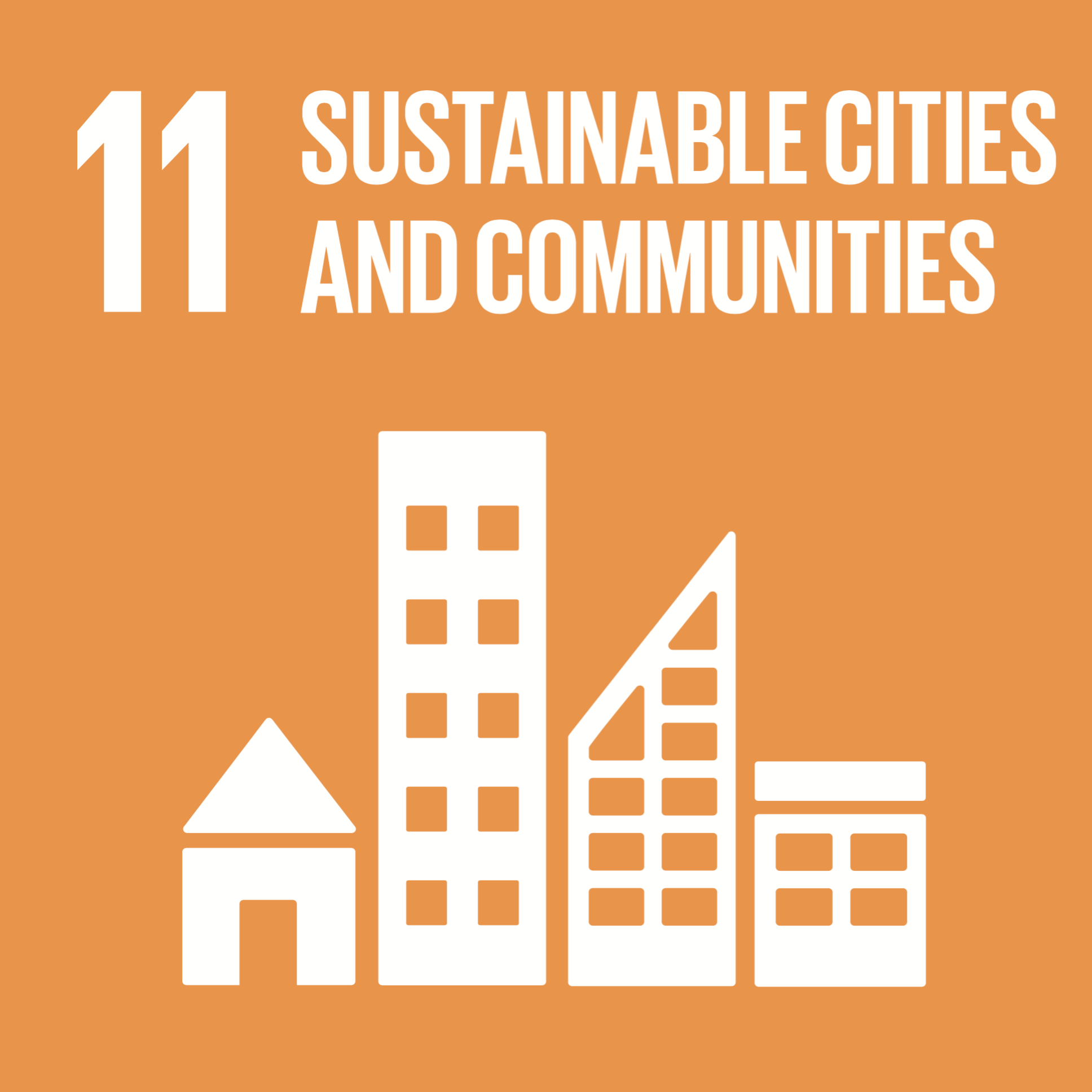Sustainable Development Goals 11