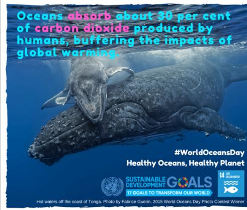 Healthy Oceans Healthy Planet World Meteorological Organization - Number of oceans