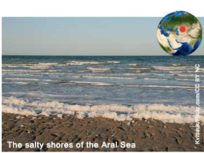 The salty shores of the Aral Sea