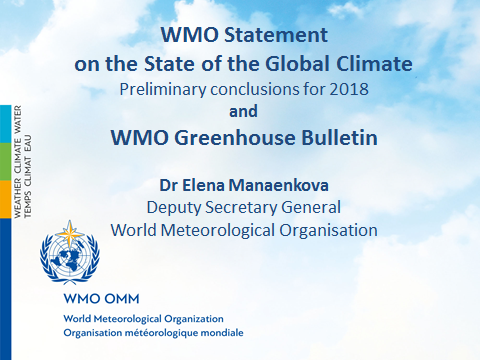 United Nations Climate Change Conference (COP 24, CMP 14 and