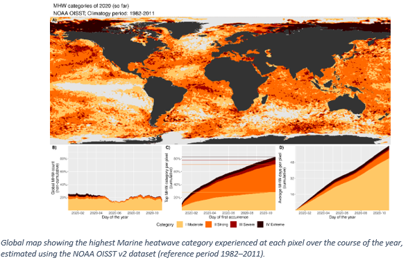 Global map showing the highest Marine heatwave category 12-20