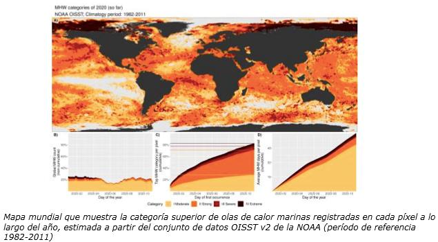 Mapa mundial que muestra la categoría superior de olas de calor marinas