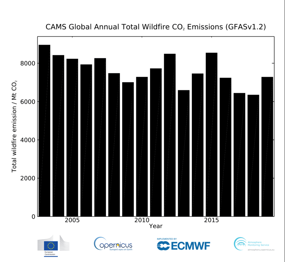 CAMS Global Anual Total Wildfire CO2 2019