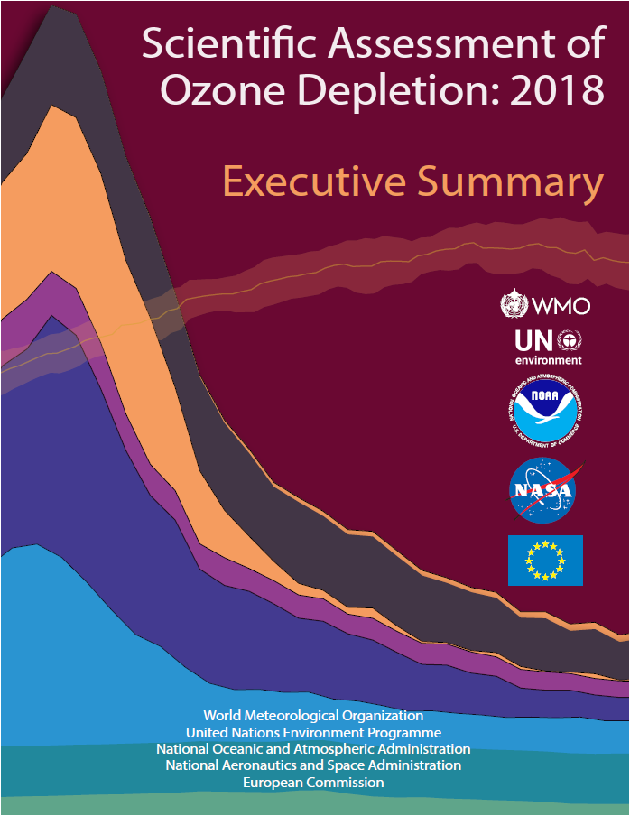 Ozone assessment report