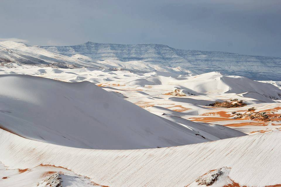 Snow falls in high plateau of Algerian Sahara