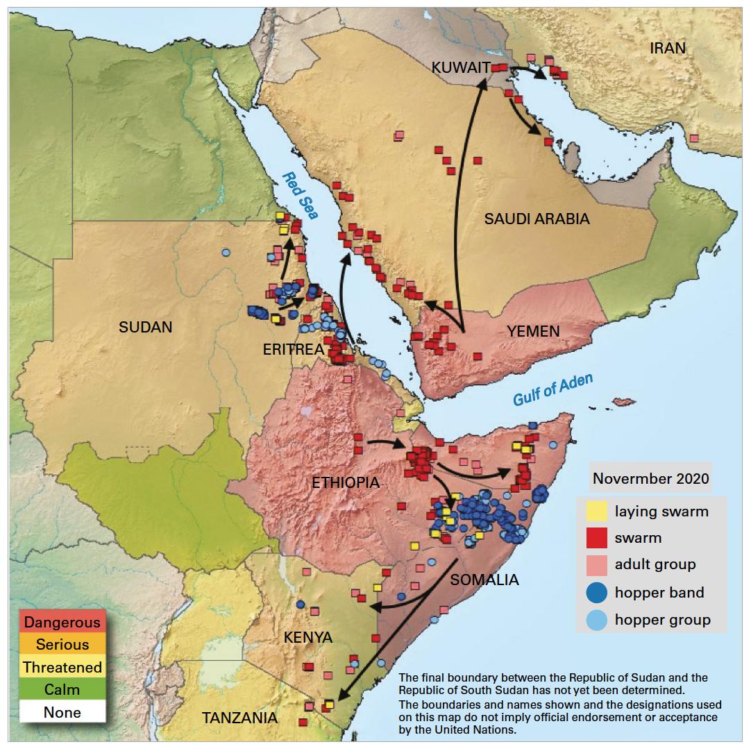 Desert locust movement prediction