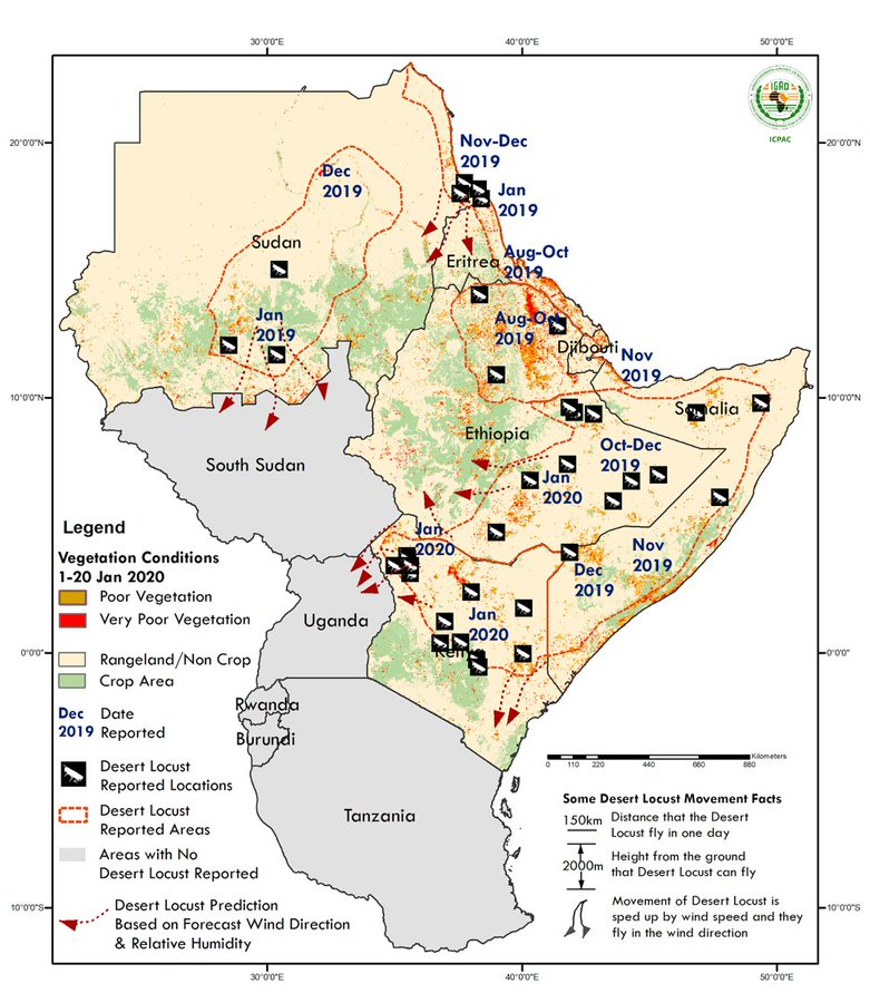 Desert locust crisis in East Africa, Jan 2020