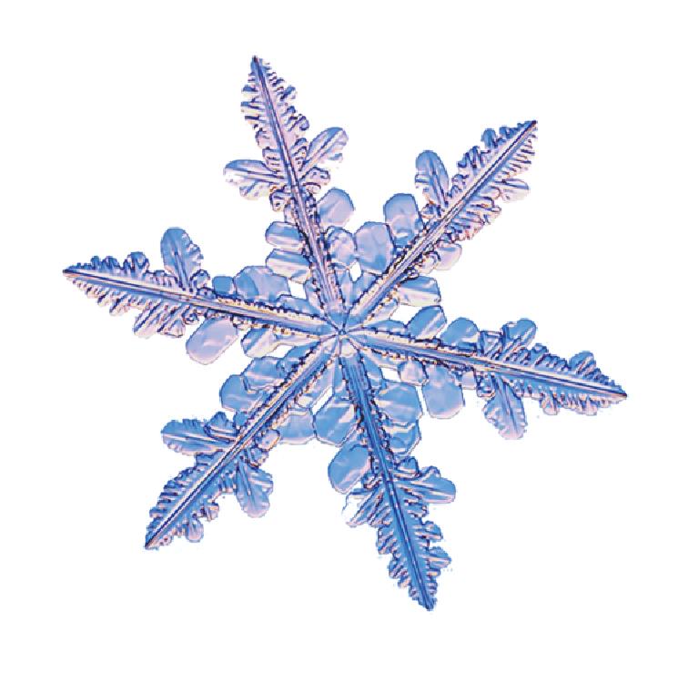 GCW logo snowflake.