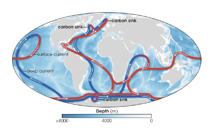 Figure 1: The ocean's surface layer