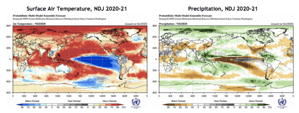 Global Seasonal Climate Update 29.10.2020