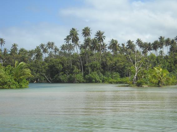 New project scales up early warning systems in the Pacific