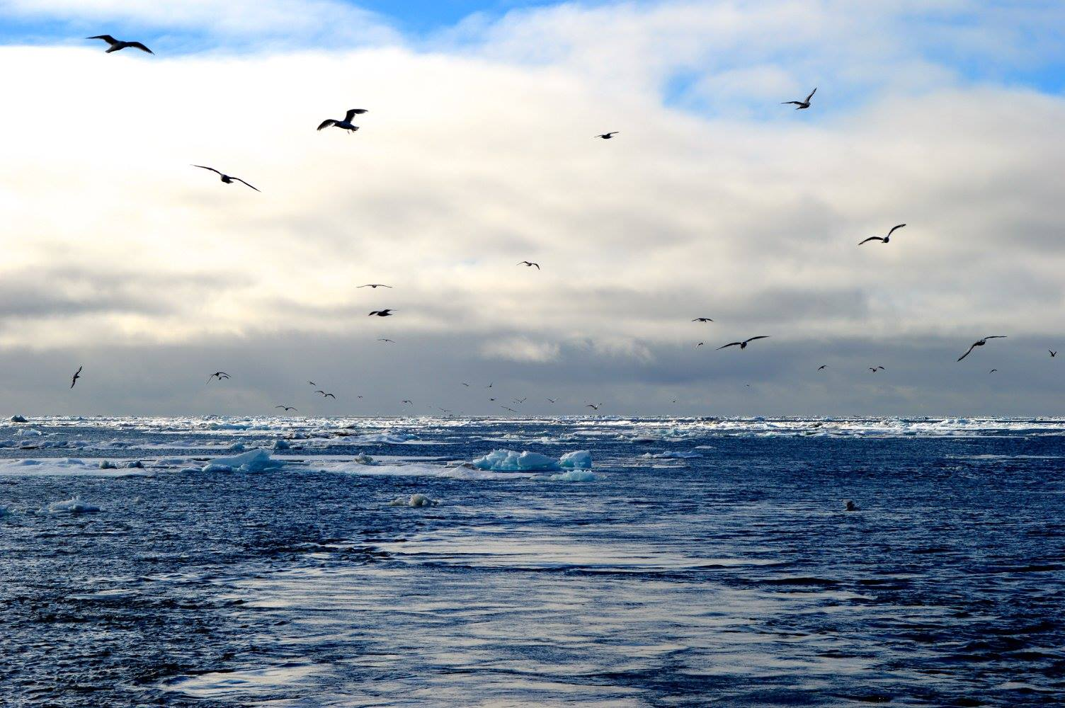 Decade of Ocean Science for Sustainable Development 2017