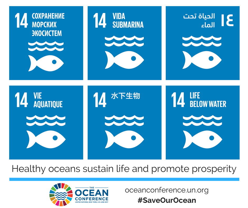 The Ocean Conference, 5-9 June 2017