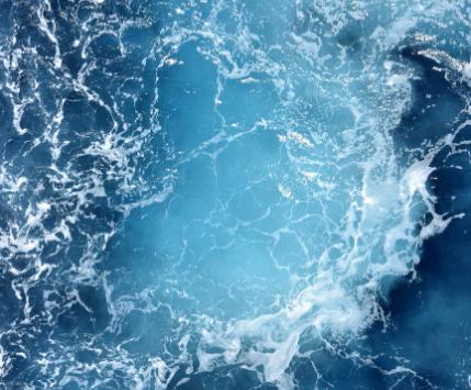 South American Members Prioritise the Ocean