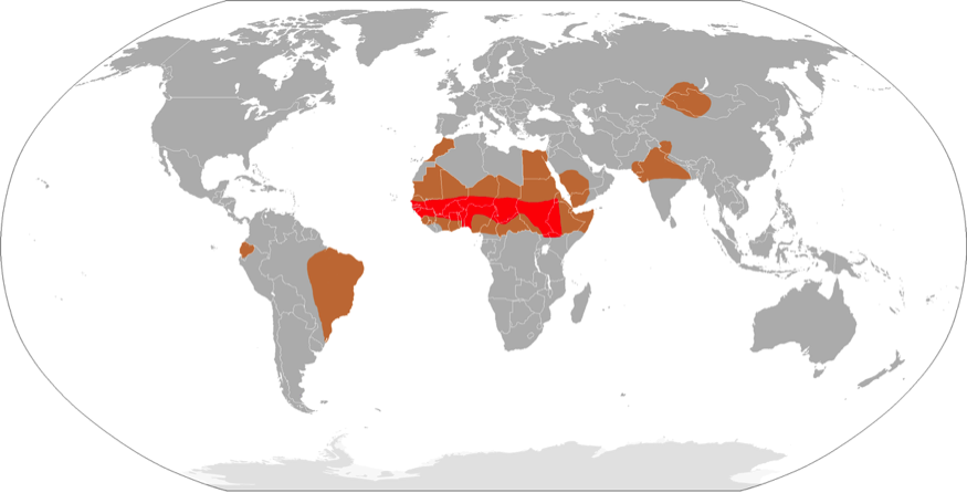 Map of meningitis belt (in red) and regions of high risk of epidemics (brown) all other regions may have lower incidence of outbreaks and sporadic cases (source: World Health Organization)