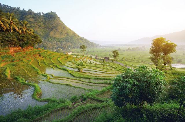 World Climate Services Programme Dudarev Mikhil Indonesia