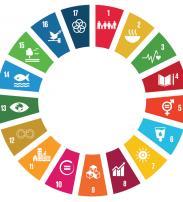 UN SDGs logo
