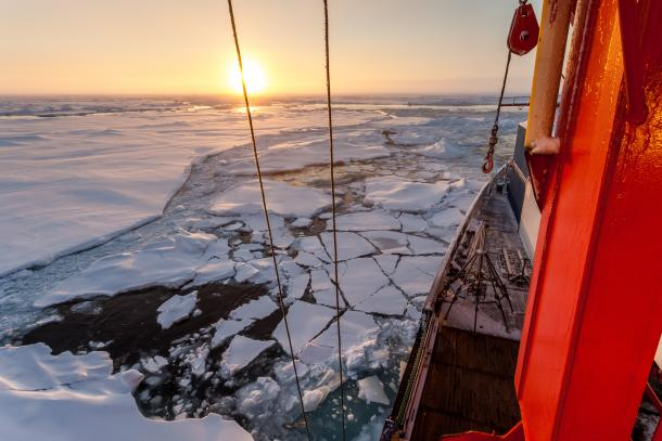 Polar Prediction Project / WMO
