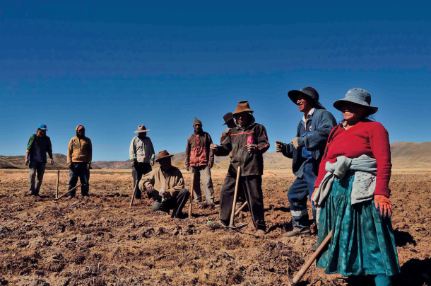 Climandes Climate Services for the Andes
