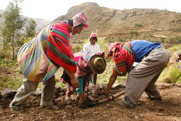 Enrique Castro-Mendívil_Peru