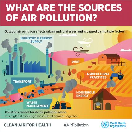 WHO Air Pollution Conference