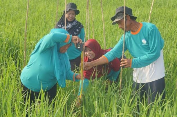 Climate field schools in Indonesia