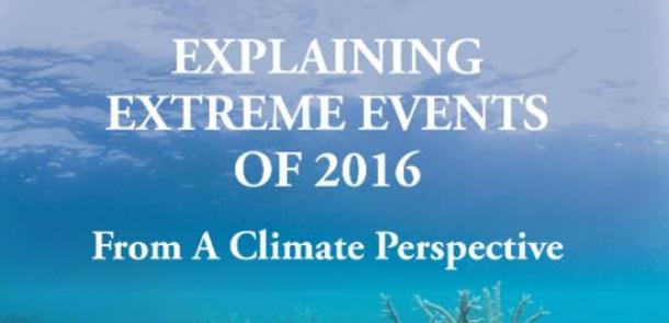 Explaining extreme events of 2016
