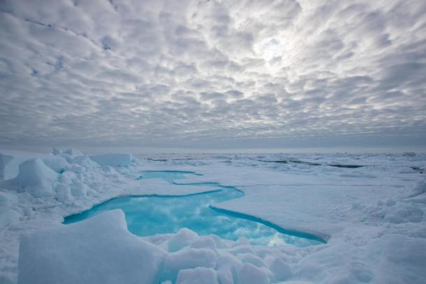 Arctic Report Card confirms climate change disruption | World  Meteorological Organization