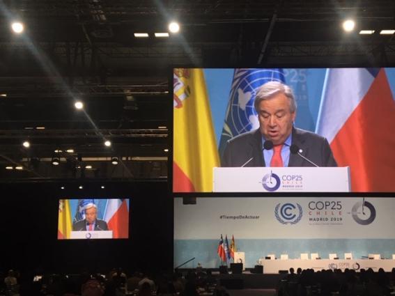 WMO at COP25