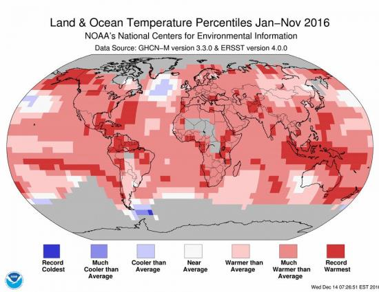 Global average Jan-November 2016 temperatures: NOAA