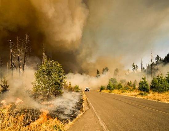 "Climate change ""increases the risk of wildfires"""