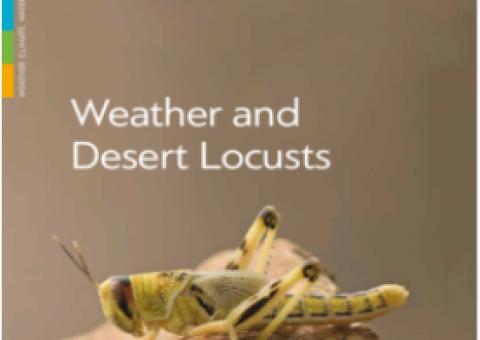 Weather and Desert Locusts