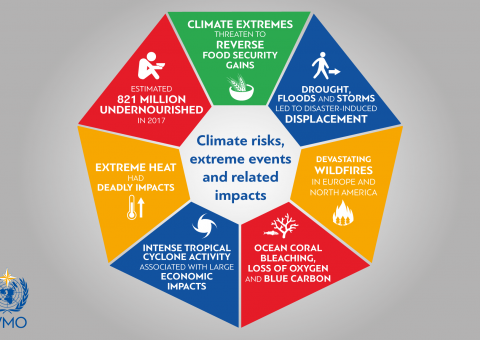 Climate impacts in 2018