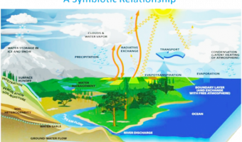 Water cycle and Meteology