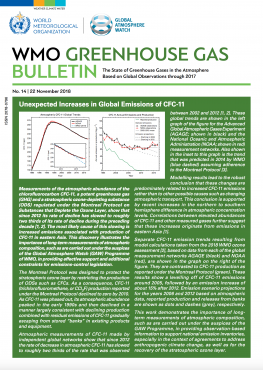 Greenhouse Gas Bulletin 2017 Cover