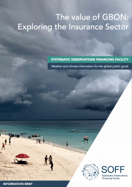 The value of GBON: Exploring the Insurance Sector