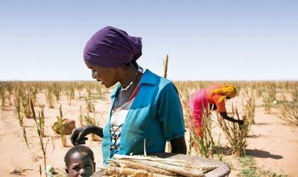 Climate Services for Increased Resilience in the Sahel
