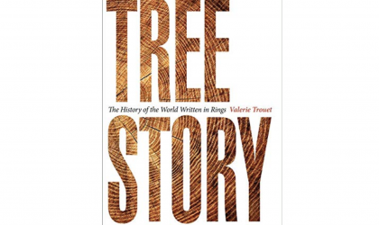 Tree Story Book