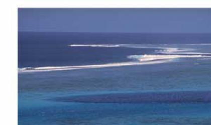 Bulletin_20_2-Ocean GOOS.jpg