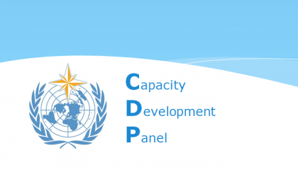Capacity Development Panel