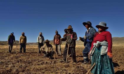 Climandes: new report provides best-practices for farmers in Peru and the Andean region