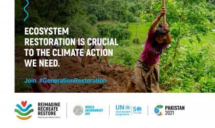 World Environment Day focuses on ecosystem restoration