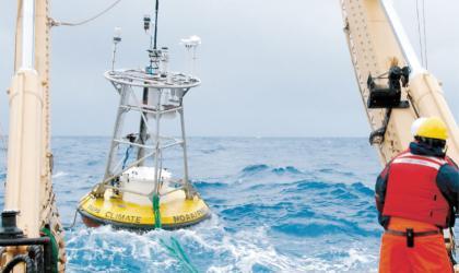 JCOMM ocean report card 2019