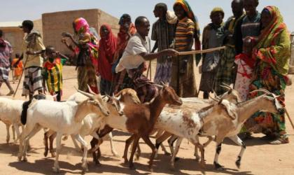 Greater Horn of Africa Climate Outlook forum