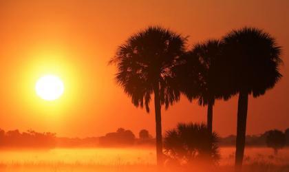 Credit: WMO Calendar 2021 - Paul Strauss (USA) Location: Okeechobee County, Florida